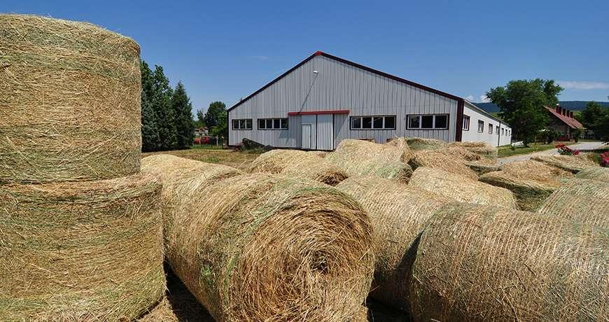 Horse Arena exterior metal steel hall dry storage leisure